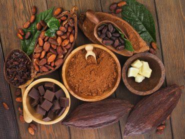 cocoa beans, cocoa powder, cocoa nibs, white chocolate, chocolate