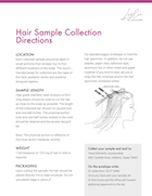 Hair Sample Collection